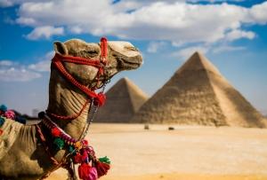 Египет начал серьезное обновление инфраструктуры