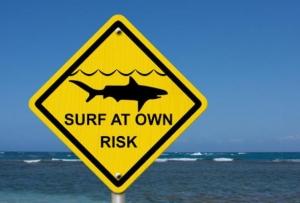 Туроператор прокомментировал инцидент с нападением акулы на туристов у берегов Синая