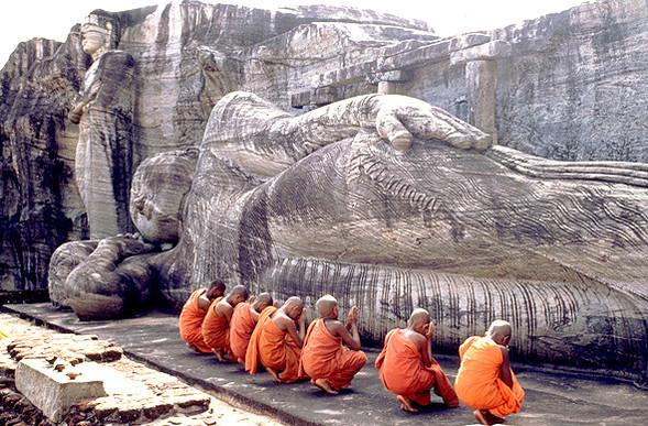 Отдых на Шри-Ланке ON-LINE ПОИСК ТУРОВ - экзотическое веселье!